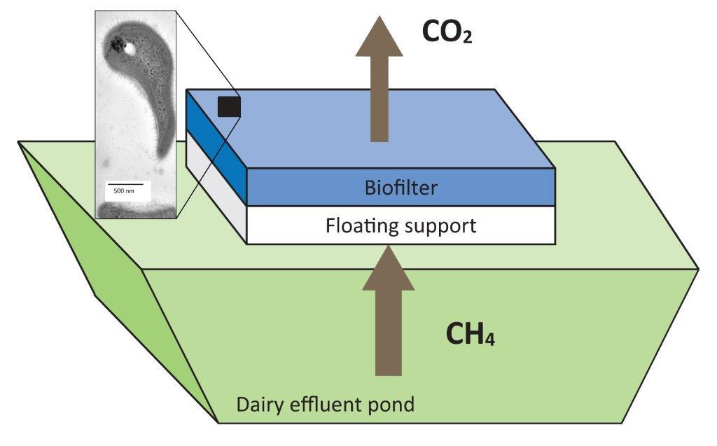 Kevin_Tate-Floating_biofilter_concept_November2015