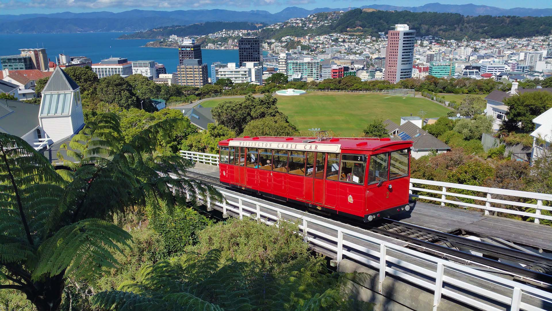The sustainability opportunity – a Wellington story.
