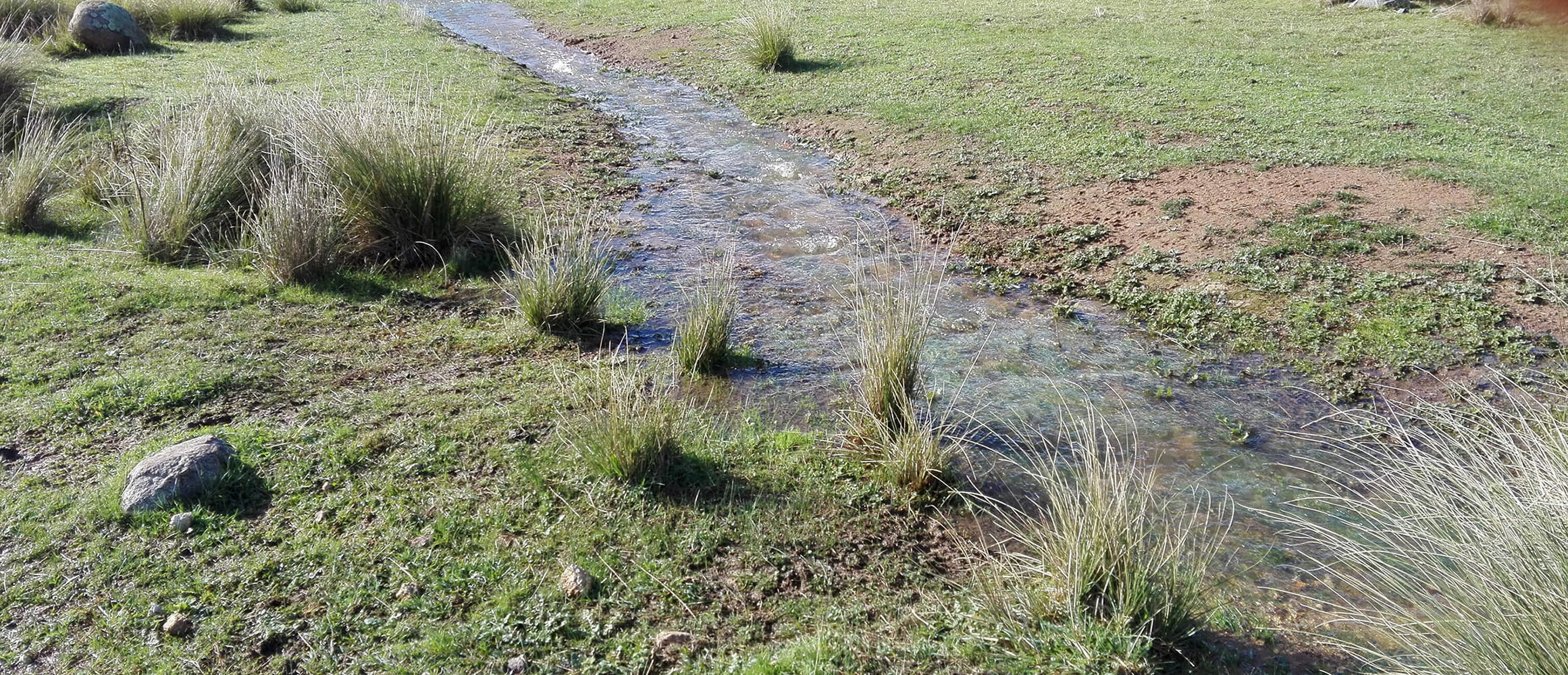 Uniting Farmers and Environmentalists through the Water Cycle
