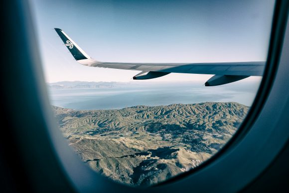 Air New Zealand Wing